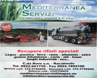 Mediterranea Servizi