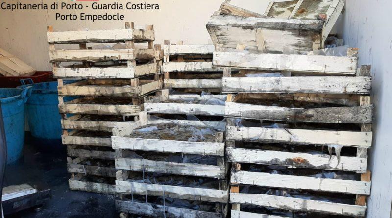 PALMA DI MONTECHIARO – Ossi di Seppia, contrasto alla pesca illegale