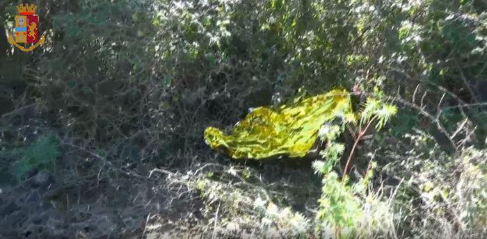 NICOSIA – Allevatore morto, prende corpo l'ipotesi omicidio